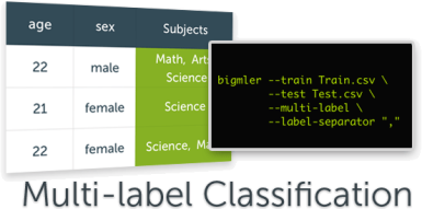 multi_label_classifications