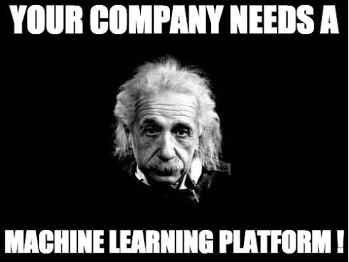 Your Company Needs a ML Platform!