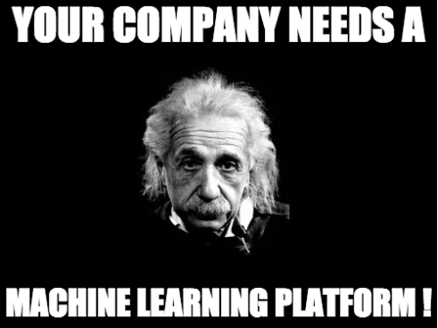 Your Company Needs a ML Platform!