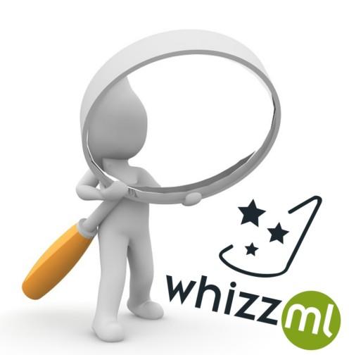 WhizzMLLoop