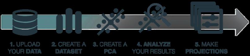 pca-workflow
